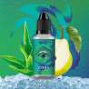 AROME CONCENTRE ALOHA 30ML WINK