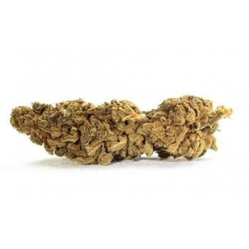 Caramel Cookie 6% CBD - Fleurs CBD - Indoor