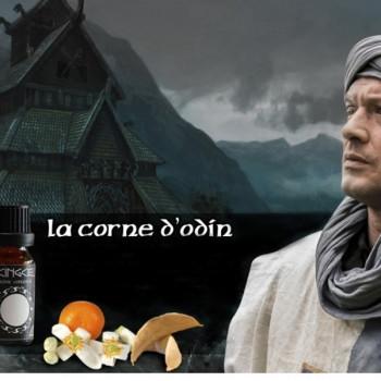 LA CORNE D'ODIN AROME CONCENTRE LE VIKING CELTE - LE GOUT DE LA VAP